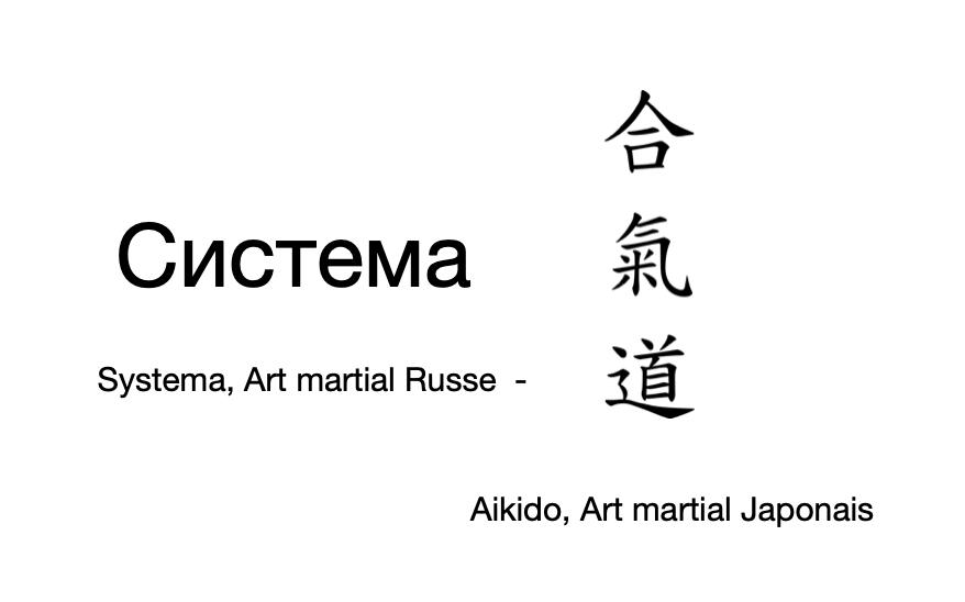 Aikido et Systema : La Complémentarité