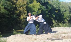 Stage d'Aikido (LPC), Ludovic le Parc