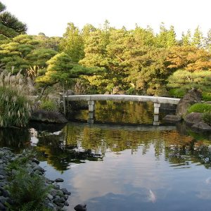 Jardin Japon